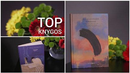 Vasario TOP knygos: rekomendacijos Vilniaus knygų mugei