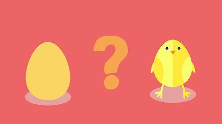 Kas atsirado pirmiau – višta ar kiaušinis?