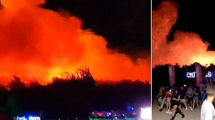 """""""Pramogų sala"""" tapo pragaru: kilus miško gaisrui evakuoti tūkstančiai turistų"""