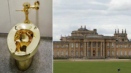 Tualeto vagystė: nusikaltėliai iš muziejaus išsinešė veikiantį 5 mln. USD vertės auksinį eksponatą
