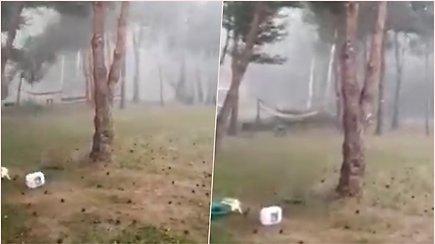 Užfiksavo, kaip Trakų rajone per audrą lūžta medis