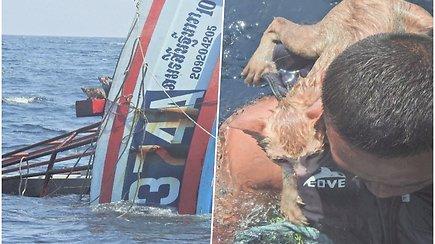 Pareigūnai atliko neeilinę gelbėjimo operaciją – iš skęstančio laivo išplukdė kates