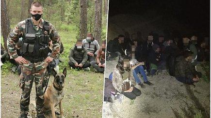 Praėjusią parą ties Baltarusijos siena sulaikyti 52 migrantai – VSAT paviešino vaizdo įrašą