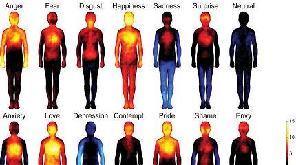 Emocijų alchemija: kaip jos atsiranda ir kaip veikia mūsų kūną