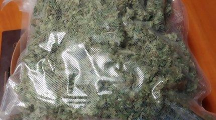 Radybos Jonavoje: per kratą aptikti 2 kilogramai marihuanos