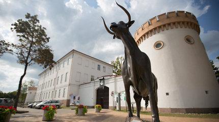 Išrinktos 2023, 2024 ir 2025 metų Lietuvos kultūros sostinės