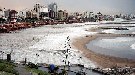 2018 metų jaunimo vasaros olimpinės žaidynės vyks Buenos Airėse, Glazge arba Medeljine