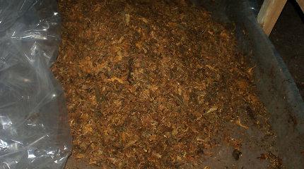 Neapdorotą tabaką ketinama apmokestinti akcizu