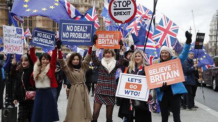 """Tyrimas: britų visuomenė nelinkusi eiti į kompromisą dėl """"Brexit"""""""