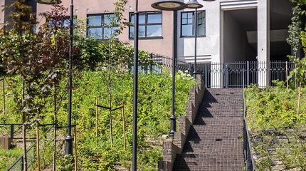 Reformatų sodui atsidarius kyla klausimai: kodėl laiptai veda į privatų kiemą?