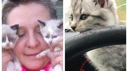 Su ketvirtos stadijos vėžiu kovojanti Jolita į Lietuvą grįžo atsigauti, bet įsisuko į kačių gelbėjimo veiklą