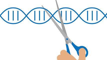 """""""NY Times"""": PSO ekspertų grupė siekia apriboti eksperimentus su žmonių genais"""