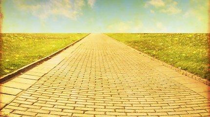 Kiekvienam nutiestas: kur vedė tikrasis geltonų plytų kelias, įkvėpęs garsiąją pasaką?