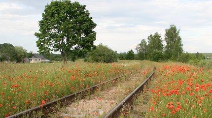 Šiauliuose norima atidaryti prieš 22 metus užtvertą geležinkelio pervažą