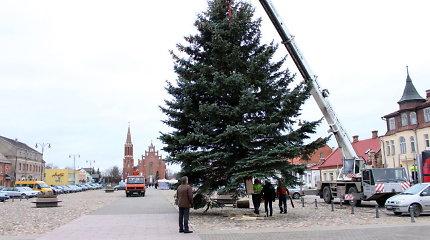 Rokiškyje prasideda kalėdinė puošyba: į miesto centrą atkeliavo žaliaskarė