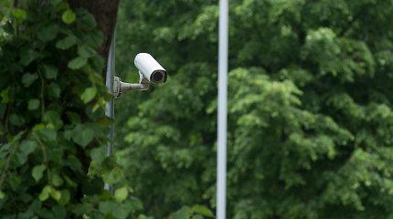 Žvėrių viliojimo vieta Šilutės rajone priviliojo ir ilgapirščius – dingo vaizdo kameros