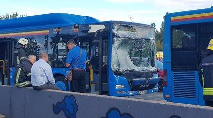 Klaipėdoje žiedu nepasidalino du maršrutiniai autobusai, nukentėjo bent 5 keleiviai
