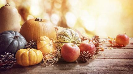 Penktadienio horoskopas – spalio 15 d.