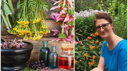 Airijoje gyvenanti lietuvė žolininkė pataria, kokius augalus šiuo metu naudingiausia vartoti