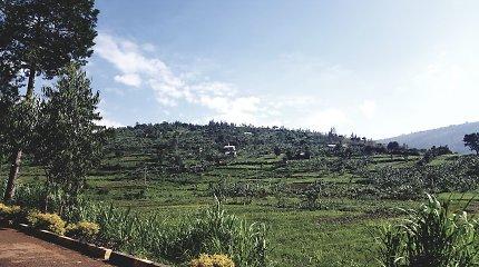 Ruanda: kiek kainuoja progresas?