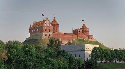 """""""Tėvynės karūna"""": ar įmanoma atstatyti Aukštutinę pilį?"""