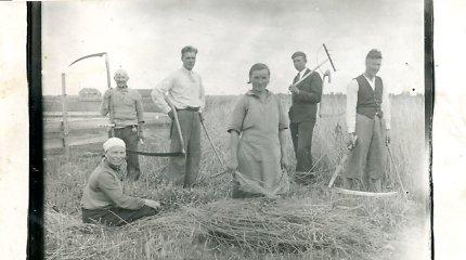 Ūkininkai prieš Smetoną: kova dėl teisingų mokesčių, Seimo ir demokratijos (I dalis)