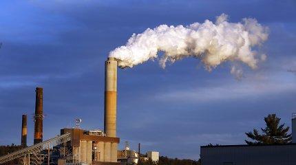 Sukurta ateities sistema: surenka anglies dioksidą, o gamina elektrą ir vandenilio kurą