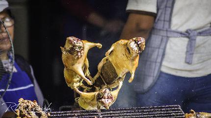 Andų virtuvė: kodėl jūrų kiaulytės čia – delikatesas, o ne mielas augintinis?