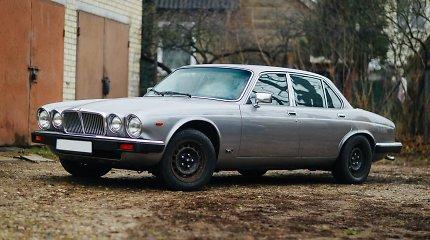 """Anksčiau žavėjo pasiturinčius vairuotojus, dabar – klasikos mėgėjus: imperatoriškas """"Jaguar XJ6"""""""