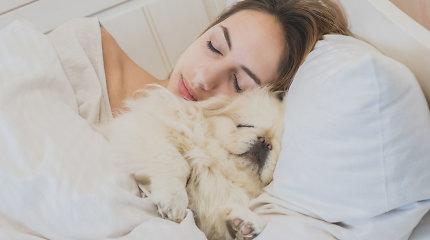 Miegate su gyvūnu, jį bučiuojate, apklostote savo drabužiais? Tai gali būti pavojinga jūsų sveikatai