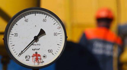 Seimas liberalizavo dujų rinką