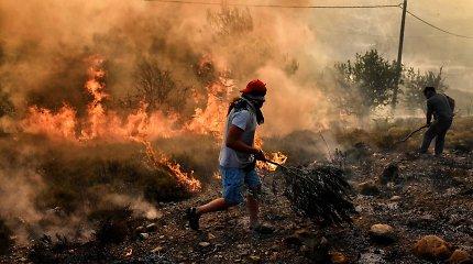 Graikijoje mirus dar vienam sužeistajam Atikos miškų gaisrų aukų padaugėjo iki 96
