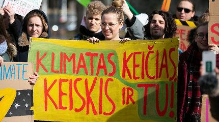 Klimato kaita svarbi ne tik Gretai Thunberg, bet ir Lietuvos moksleiviams