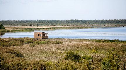Žuvinto biosferos rezervatas: paukščių balsai ir ramiai ošianti sengirė
