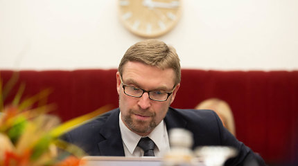 Vieną dieną Vyriausybė pateikia Seimui vaiko teisių įstatymo pataisas, kitą – jau nebenori jų svarstyti