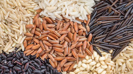 Ryžių rūšių gidas: kaip teisingai išrinkti, virti ir ką skanaus gaminti?
