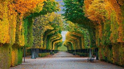 Paskelbti miestai, kuriuose gyventi geriausia: Vilnius – 81-as