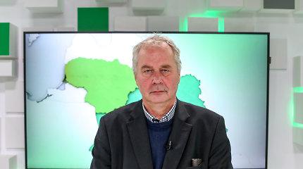 Alvydas Nikžentaitis: Naujas geopolitinis aljansas – A.Ažubalis ir A.Lukašenka