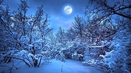 Ką daryti, kad šventinio laikotarpio nesudrumstų mėnulio pilnatis?