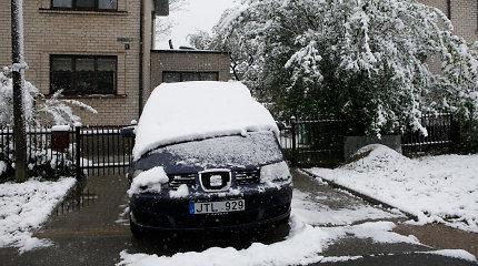 Naktį siautęs vėjas vartė medžius – Vilniuje apgadinti trys automobiliai, Kaune – du