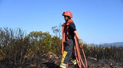 Pietų Prancūzijoje kilę gamtiniai gaisrai smarkiai pakenkė Provanso vyndariams