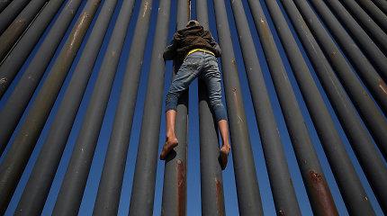 D.Trumpas skelbs nepaprastąją padėtį, kad gautų finansavimą sienai pasienyje su Meksika