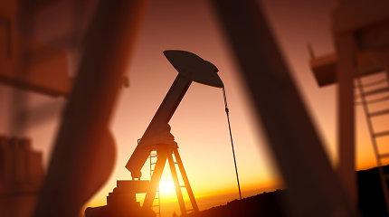 Naftos kainos pirmą kartą per tris prekybos sesijas kopia aukštyn
