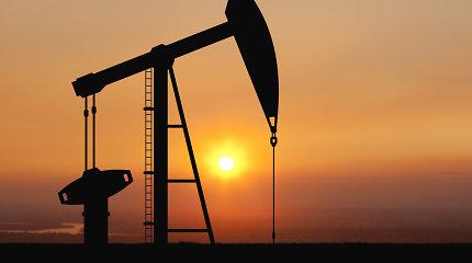 Brangstantis JAV doleris smukdo naftos kainas