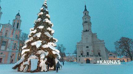 Kaunas atsisveikina su diskusiją įžiebusia Kalėdų egle: dekoracijos virs šiukšlių maišais?