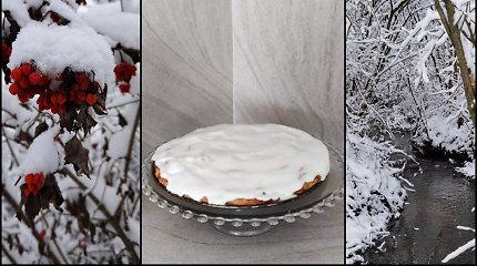 Sandros obuolių pyragas su šerkšno glaistu: lietuviškos žiemos įkvėpta proga šeimai nuo ekranų susiburti