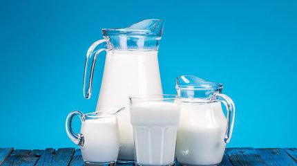 15min paaiškina: kodėl žmonės pradėjo gerti karvių pieną?