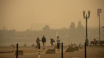 """""""NY Times"""": ką reiškia oro kokybės indeksas ir kaip saugotis nuo taršos?"""