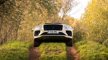 """Išskirtinių automobilių klubas: """"Bentley Bentayga V8"""" pripažintas geriausiu prabangiu visureigiu"""