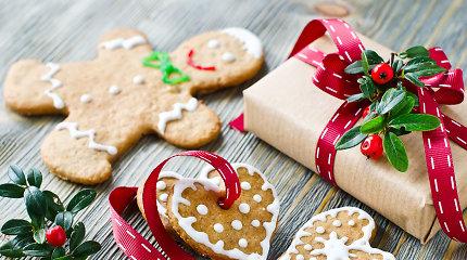 Kas gali būti gera dovana visai šeimai?